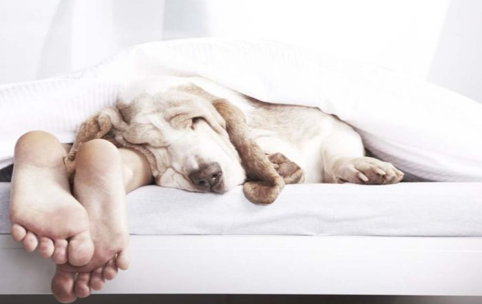сколько нужно спать человеку